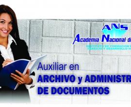 Auxiliar de archivo
